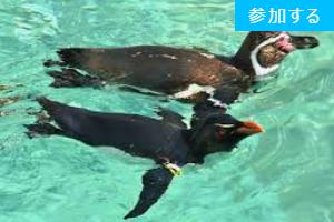 【8月イベント情報】 夜の水族館を楽しむ会  ー葛西臨海水族館ー