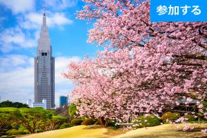 【4月イベント情報】今年もやります!お花見会(新宿)  ― 都心で気軽にお花見を満喫しよう! ―