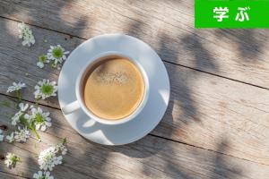 【2016年 3月】婚活カフェ・第一部(表参道) ― 婚活デビューする20代・30代の独身者を応援します!―