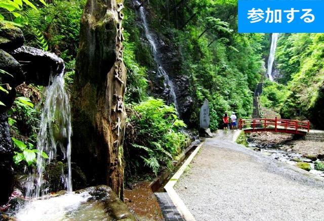 【5月イベント情報】 GWに滝見学へ行こう!(小田原) ― 自然あふれる里山でのんびり散策 ―