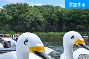 【5月イベント情報】 GWにボート遊びを楽しもう!(石神井公園) ― 緑豊かな公園で散策&貸しボート体験 ―