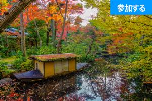 【11月イベント情報】秋の美術館めぐり(青山・六本木)― アート見学しながら交流を楽しもう!―