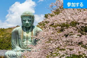 【4月イベント情報】春の鎌倉散策(鎌倉・長谷) ― 古都で季節を感じるスローな旅 ―