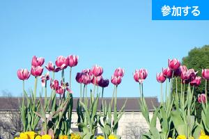 【5月イベント情報】 上野でアートを楽しもう!(上野恩賜公園)  ―美術館めぐりをしながら交流を楽しもう! ―