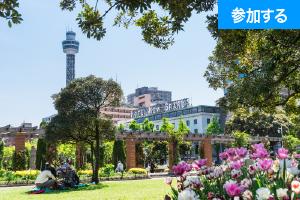 【3報】春の横浜散歩(横浜・山下) — 横浜港をお散歩をしながら交流を楽しもう! —