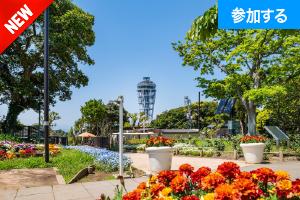 【5月イベント情報】 GWに江の島散策を楽しもう!(湘南・江の島) ― 江島神社で運気UP&ぐるっと島探検!―