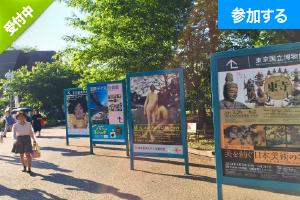 【6月イベント情報】 上野でアートを楽しもう!(上野恩賜公園)  ― 美術館めぐりをしながら交流を楽しもう! ―