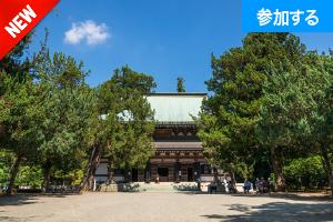 【10月イベント情報】秋の鎌倉散策(北鎌倉) ― 古都で季節を感じるスローな旅 ―
