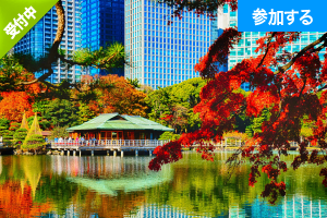 【10月特別企画】 Tokyo☆秋の庭園交流会(浜離宮恩賜庭園) ― 都内屈指の名庭園で交流を楽しもう! ―