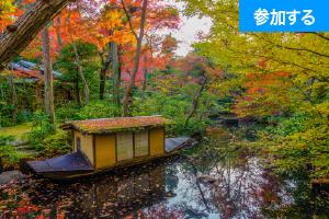 【12月イベント情報】Tokyo☆秋の美術館めぐり(青山・六本木)― 都心で紅葉狩りを楽しもう!―