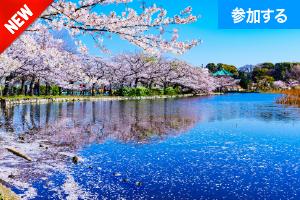 【3月イベント情報】 上野でアートを楽しもう!(上野恩賜公園)  ― 美術館めぐりをしながら交流を楽しもう! ―