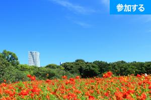 【東京都民応援企画】 Tokyo☆庭園交流会(浜離宮恩賜庭園) ― 日本家屋貸切で交流を楽しもう!〈都民半額!!〉 ―