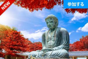 【11月特別企画】鎌倉☆秋の日帰り散策(鎌倉・長谷) ― 古都で季節を感じるスローな旅 ―