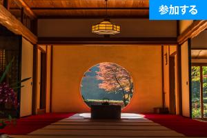 【11月イベント情報】秋の鎌倉散策(北鎌倉)― 古都で季節を感じるスローな旅 ―