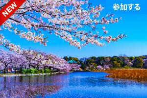 【3月イベント情報】 上野でアートを楽しもう!(上野恩賜公園)  ― アート見学しながら交流を楽しもう! ―