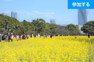 【3月特別企画】 Tokyo☆春の庭園交流会(浜離宮恩賜庭園) ― 都内屈指の名庭園で交流を楽しもう!―