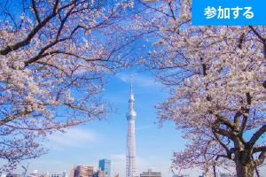【3月追加企画】 Tokyo☆春の浅草散策(隅田川~浅草寺コース) ― スカイツリーを眺めながら交流を楽しもう!―
